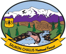 Salmon Challis National Forest
